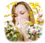 Allergy Relief Air Purifiers